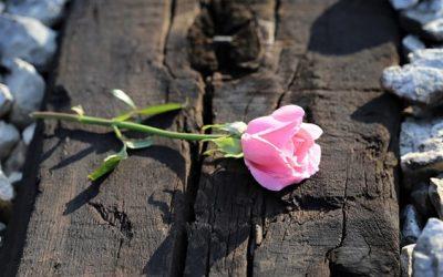 Los sucidios aumentaron en la Rioja un 100% en los últimos 6 meses